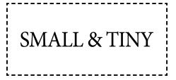 small & tiny Logo